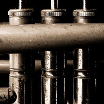 Old trumpet detail sepia II by sustine