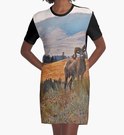 Wild Horse Island Ram Graphic T-Shirt Dress