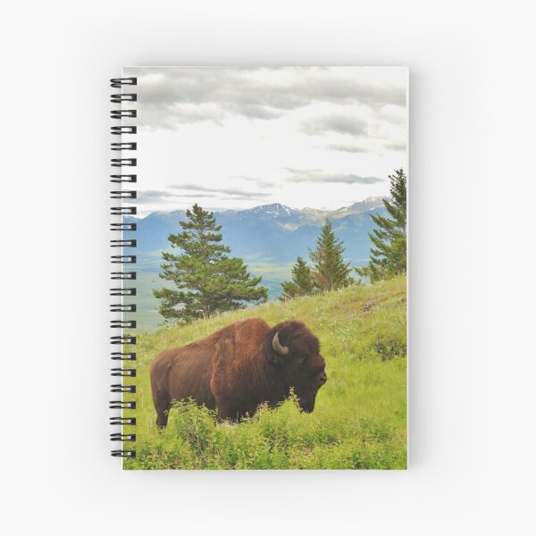 Spring Bison Spiral Notebook