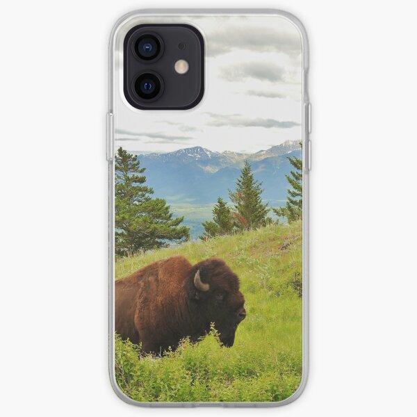 Spring Bison iPhone Soft Case
