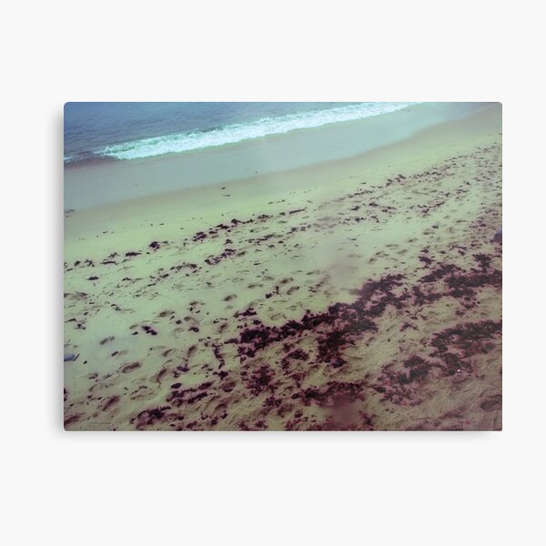 the place at the sea where my tears stained my lens Metal Print