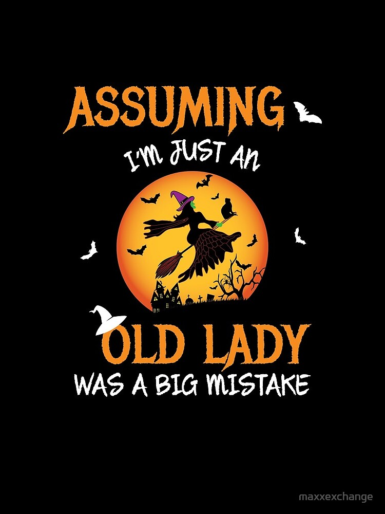 Old Lady Witch Broomstick Black Cat Bats Spider. by maxxexchange