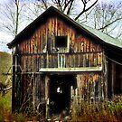 Roadside Barn by Debra Fedchin