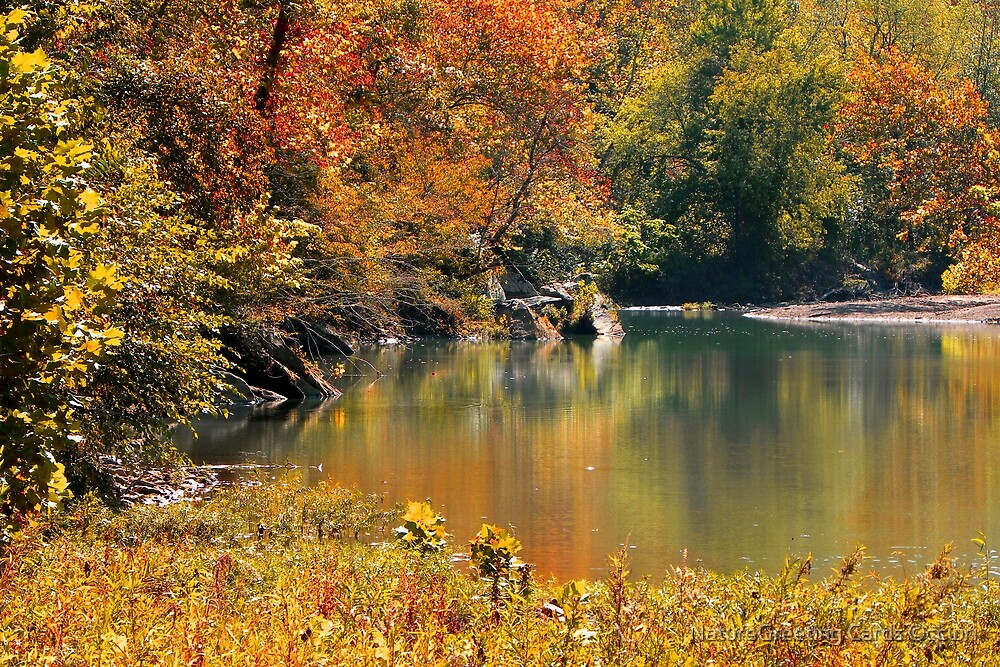 The Nature Of Autumn by NatureGreeting Cards ©ccwri
