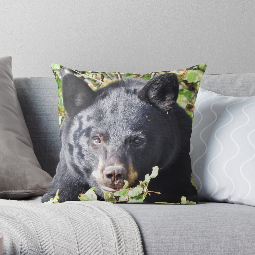 Black Bear Stare Throw Pillow