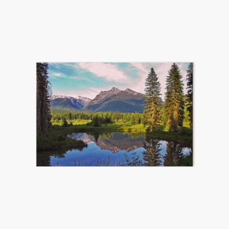 Montana Cabinet Mountains Art Board Print