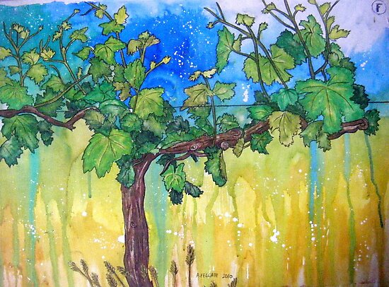 The Lonely Vine by Alexandra Felgate