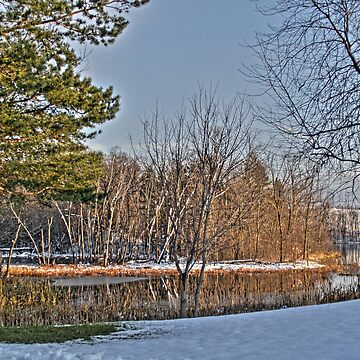 winter pond by evanj11