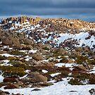 Mt Wellington Snow, Tasmania #5 by Chris Cobern