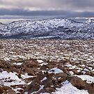 Mt Wellington Snow, Tasmania #2 by Chris Cobern