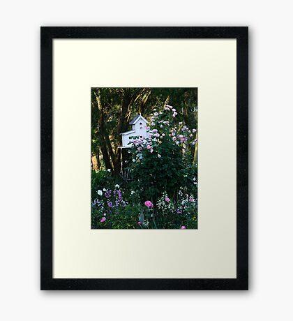 Pink Rose and Birdhouse! Framed Print