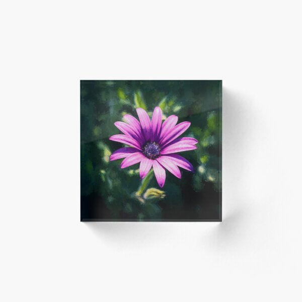 Pink Daisy     (digital painting) Acrylic Block
