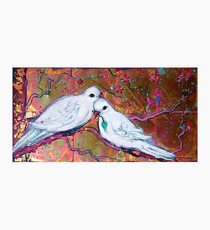 Loving Peace Photographic Print