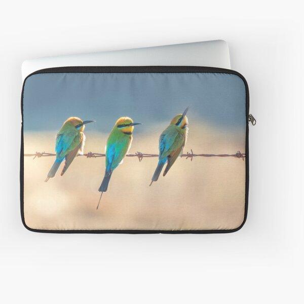Rainbow bee-eaters - Three of a Kind Laptop Sleeve