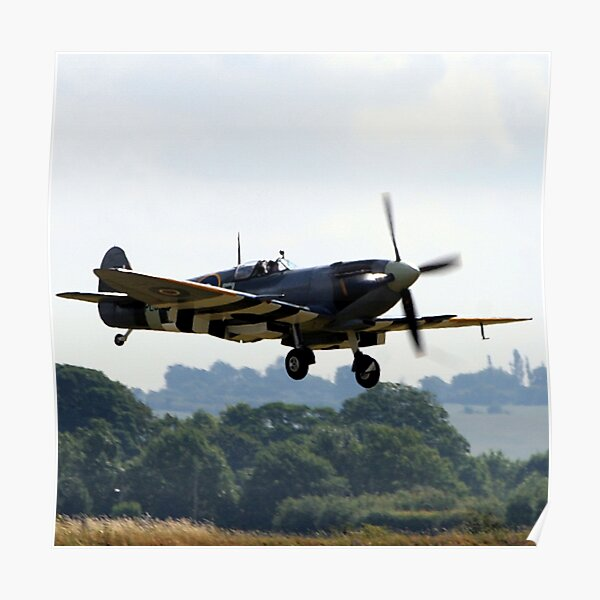 The last of the few Poster