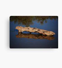 Log Reflection Canvas Print