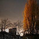 Paris by laurentlesax