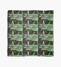 Smiling Baby Alligator Sleeping on Lilly Pad Scarf