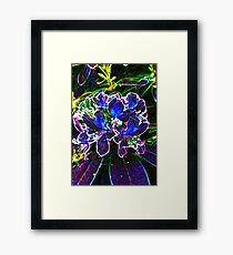 A Psychedelic Rhododendrum Framed Print