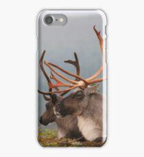 Reindeers iPhone Case/Skin