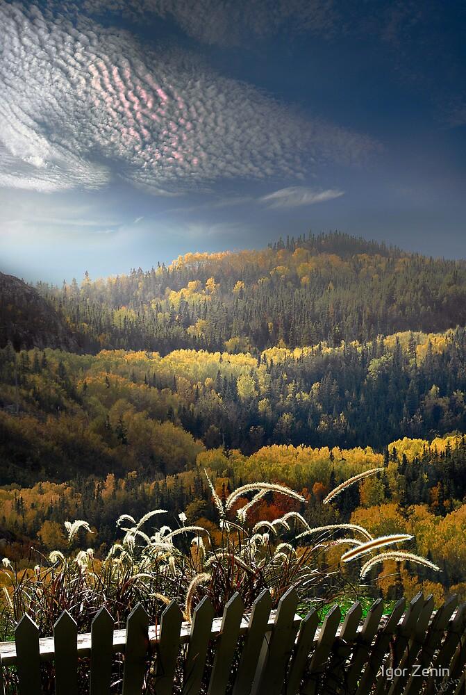 Over the Fence by Igor Zenin