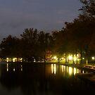 Evening at Swan Lake by Gordon Taylor
