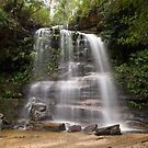 Federal Falls, Blue Mountains National Park by David Mapletoft