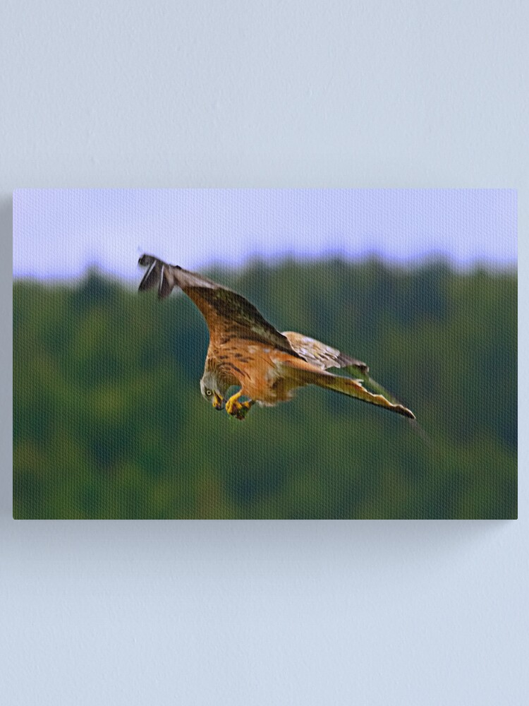 Alternate view of On The Wing Canvas Print
