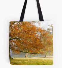 Last Moments of Colour  Tote Bag