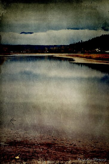 The Point by Annie Lemay  Photography