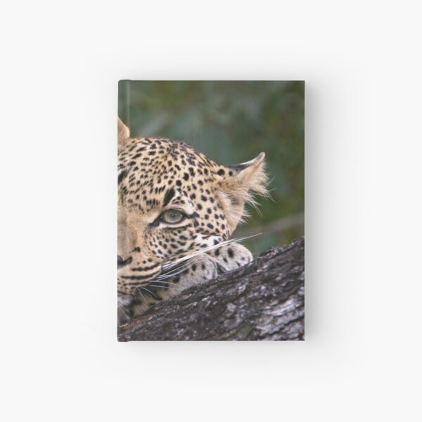Nyaleti Young Male 2-3 Hardcover Journal