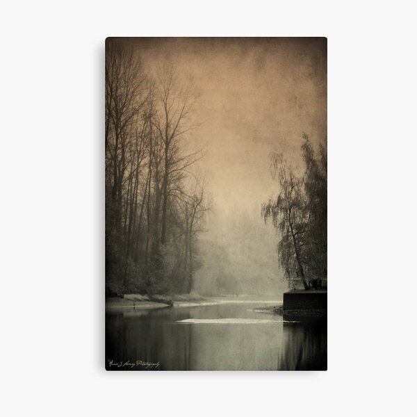Passages of  Everglades Canvas Print