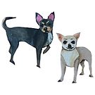 Two Chihuahuas by SarahSnippets