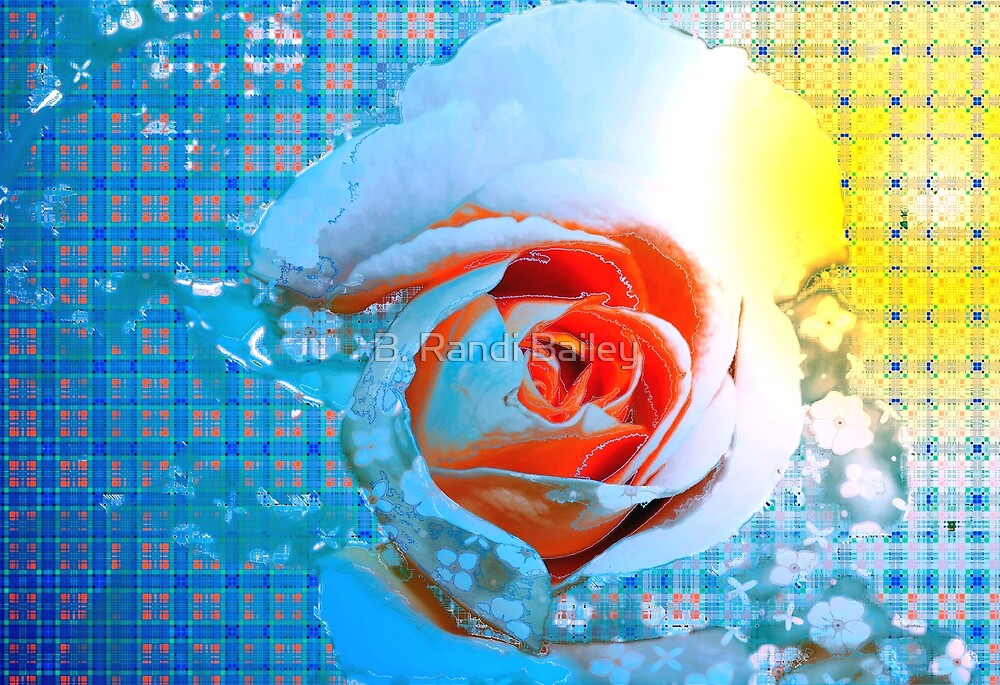 Rose with apricot center by ♥⊱ B. Randi Bailey