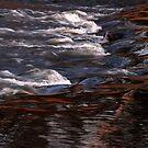 November Cascades by Joanne  Bradley