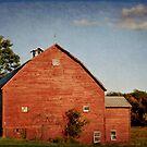 The Red Barn by Debra Fedchin