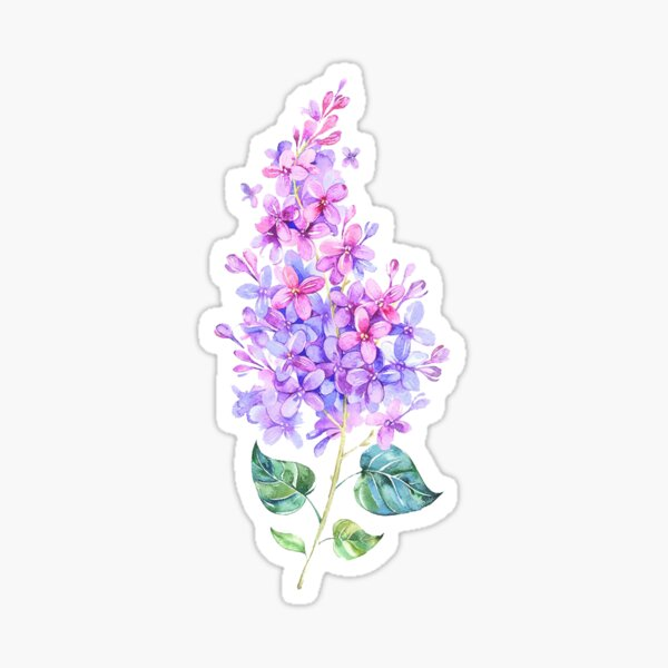 lilac spray Sticker