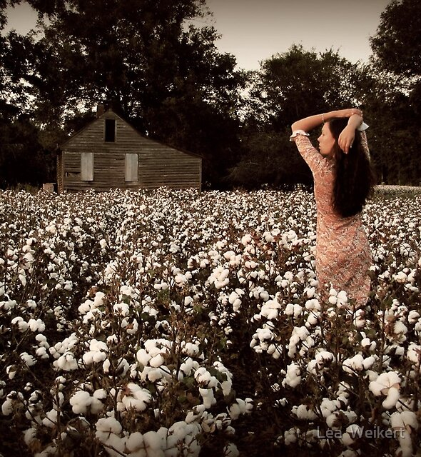 Southern Serenity by Lea  Weikert