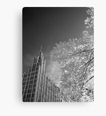 The Manchester Unity Building Canvas Print