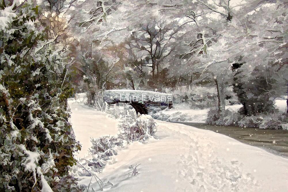 The winter bridge by Lyn Evans