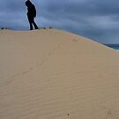 Observed, waiting, atop a wintry dune by - Zig -