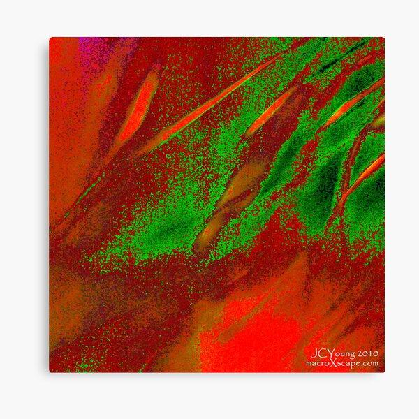 X'mas in the Air Canvas Print