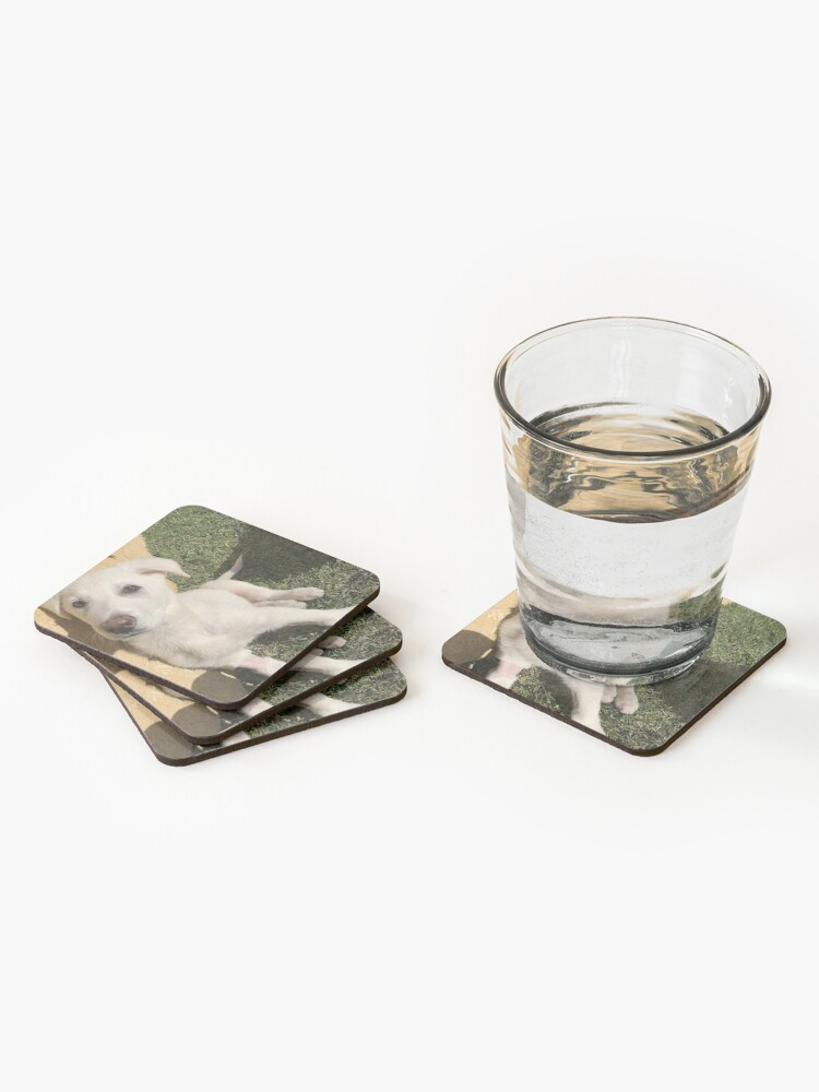 Alternate view of Casars 2  Coasters (Set of 4)