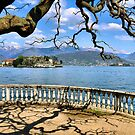 Balcony with tree and view on the lake by Francesco Malpensi