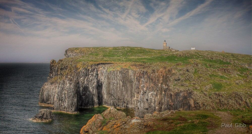 Cliffs of The Isle of May by Paul  Gibb