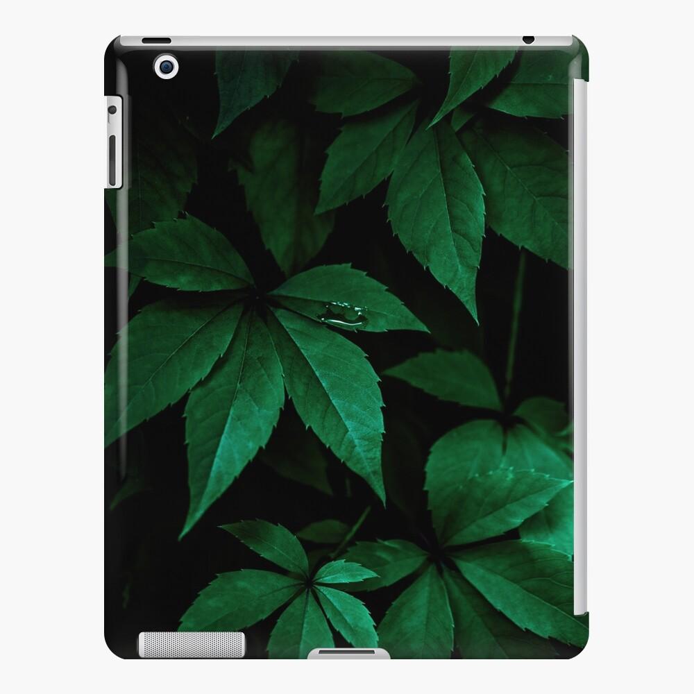 Dark Leaves 7 iPad Case & Skin