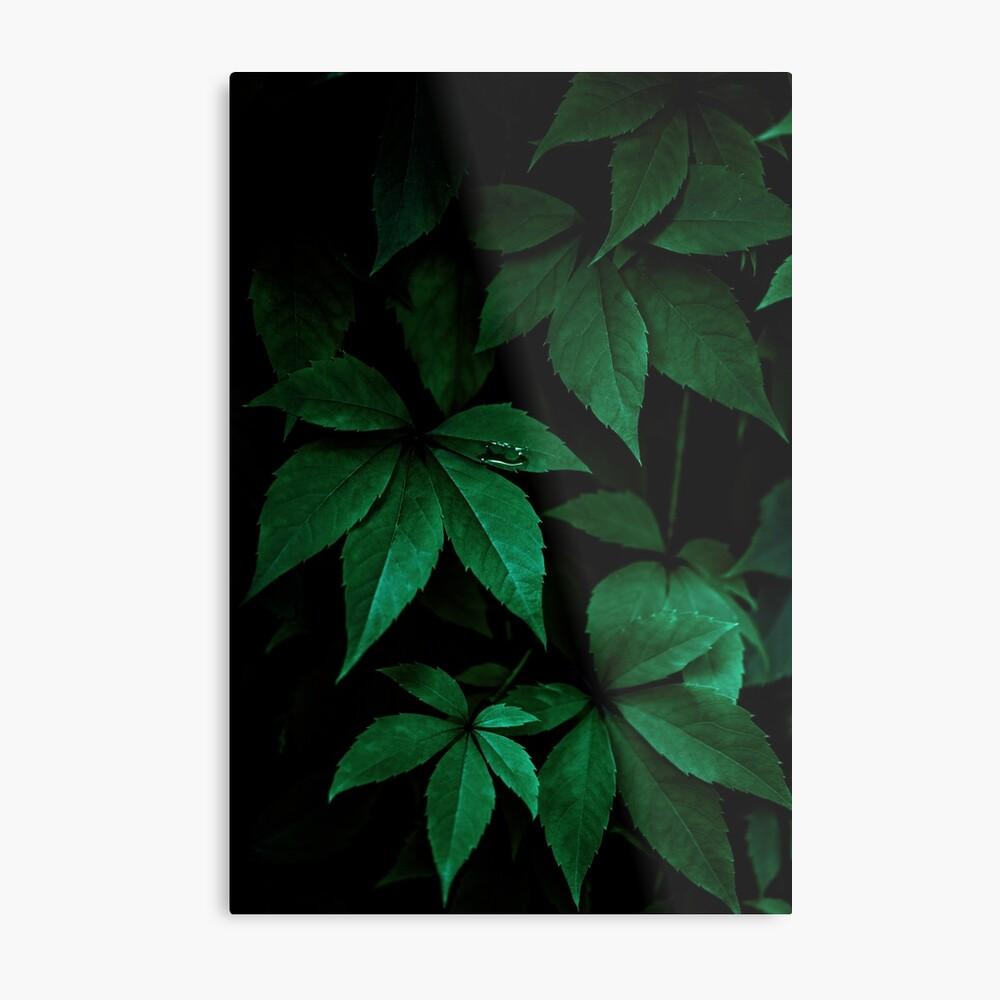 Dark Leaves 7 Metal Print