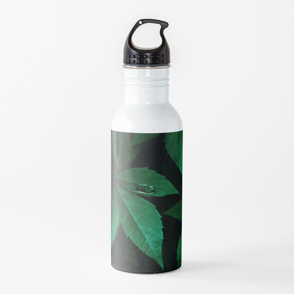 Dark Leaves 7 Water Bottle