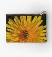 Spotted Cucumber Beetle on Dandelion  Studio Pouch