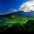 Hanalei River Valley, Kauai by Benjamin Padgett